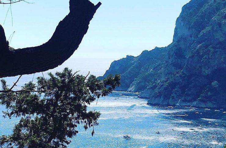 I profumi dell'estate mediterranea